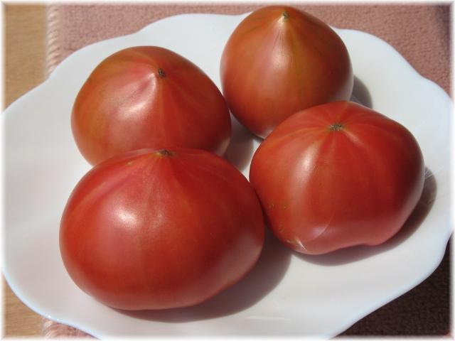 52delicious_tomato_1