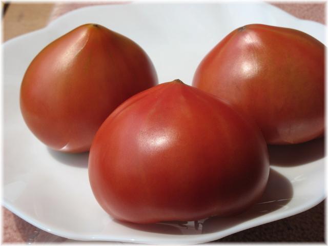 53delicious_tomato_2